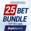 download boylesports poker